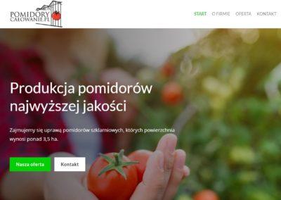 strona internetowa firmy pomidory calowanie
